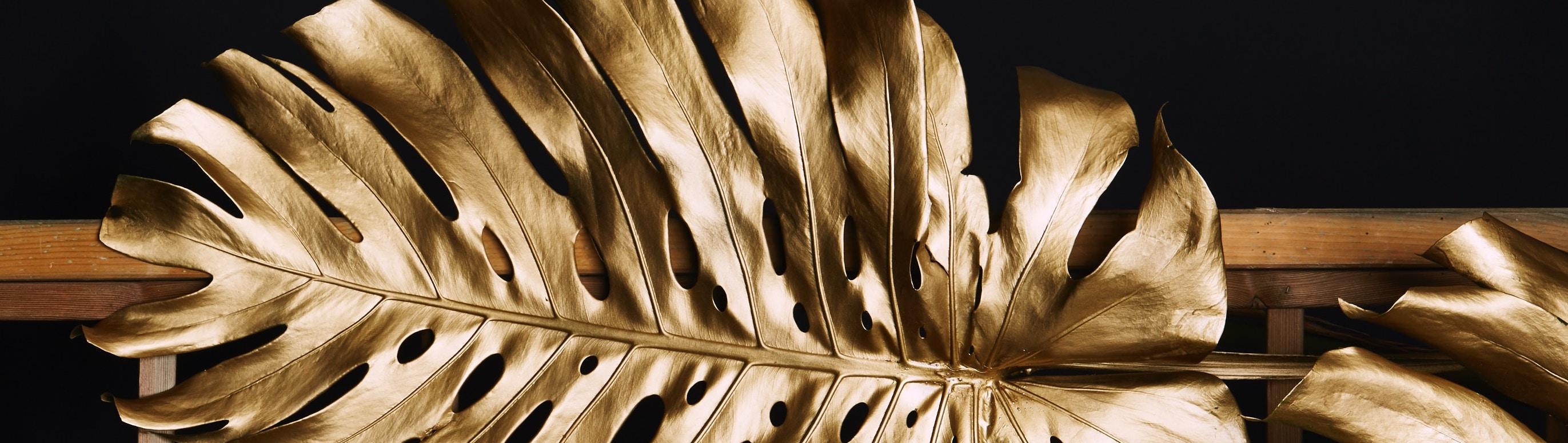 Golden Girl Vicki achieves Chartered 🥳